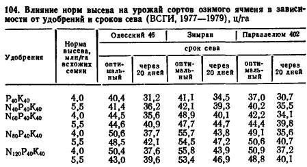 Наталья русское, по сколько центнер сеять ячмень Пётр